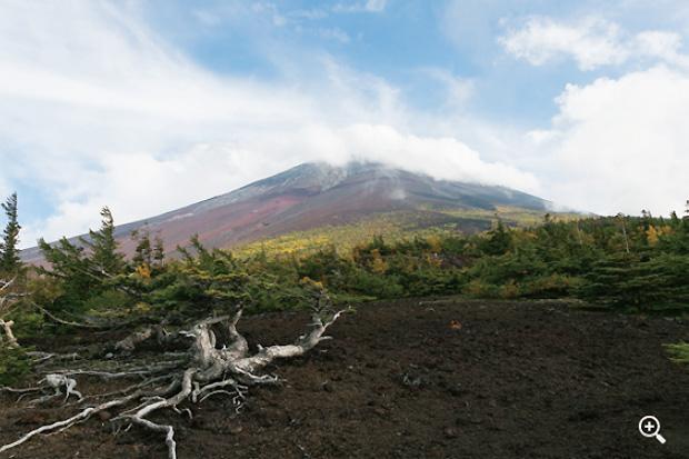 御庭での富士山