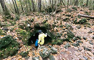 センター周辺の溶岩樹型群を探索できる