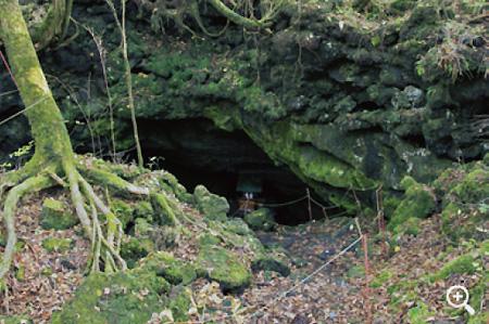樹海内にぽっかりと口をあけた「竜宮洞穴」