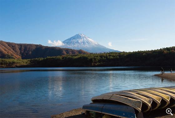 西湖から冠雪の富士山を望む